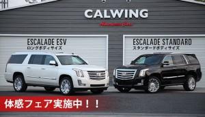 キャデラック エスカレード ESV ロングボディ   エスカレードに日本未導入のロングボディがあるのをご存知でしょうか?  キャデラック エスカレード ESV  プラチナム のご案内です!