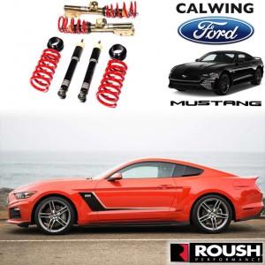 FORD/フォード MUSTANG/マスタング '15y-'19y | コイルオーバーサスペンションキット シングルアジャスタブル ROUSH/ラウシュ【アメ車パーツ】